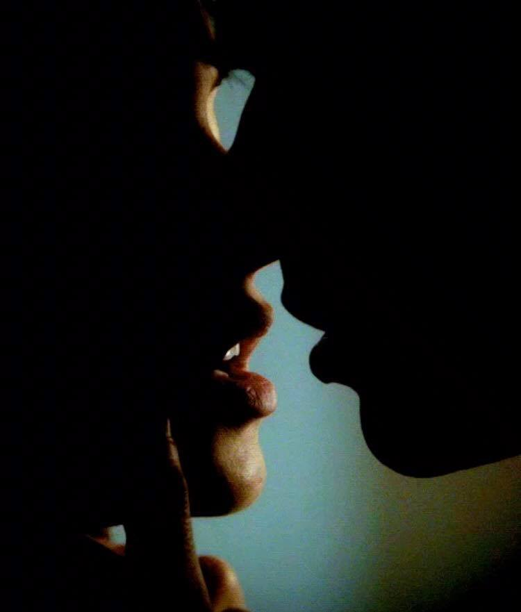 Die Liebe und ihre Schatten